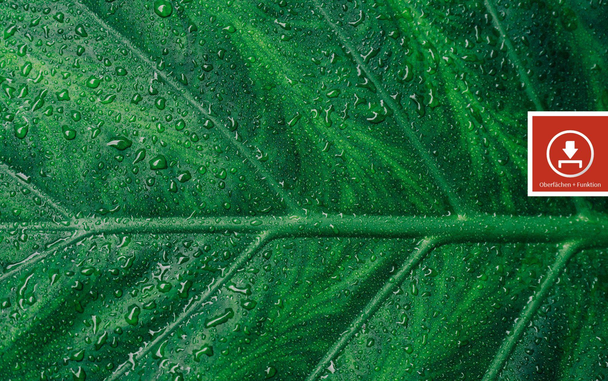 Zertifizierte Design-Oberflächen mit Haptik und Funktion